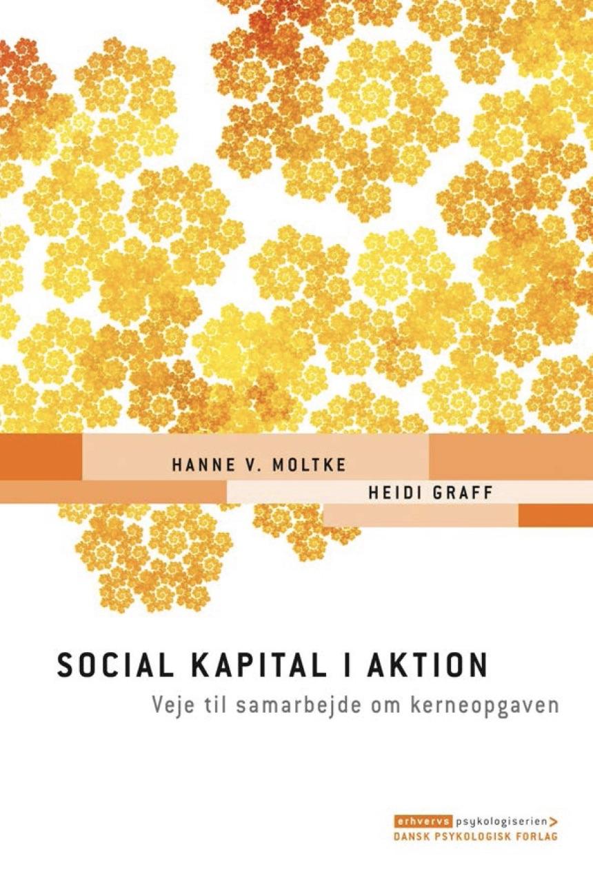 Social kapital i aktion